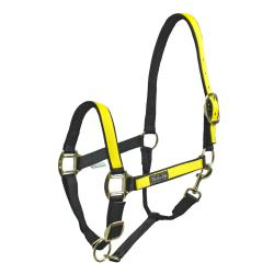 Nylon Halter With Colored...