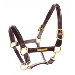 Leather Halter With Brass...