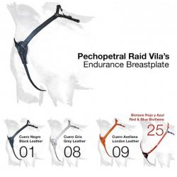Pechopetral Raid Vila´s