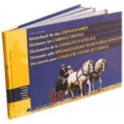 Libro: Diccionario Para...