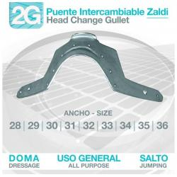 Puente Intercambiable 2g