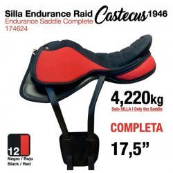 Silla Endurance Raid...