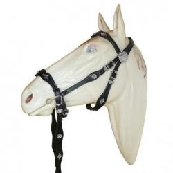 BITLESS BRIDLE CORTESIA CON...
