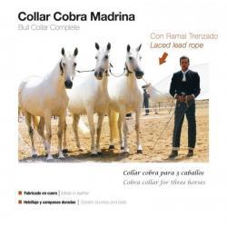 Collar Cobra Madrina Con...