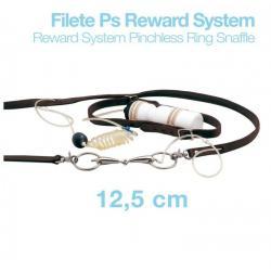 Filete Ps Reward System...